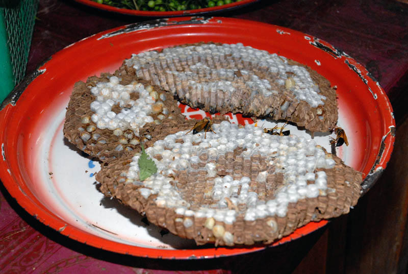 A more pleasant way to eat intestines, Laos