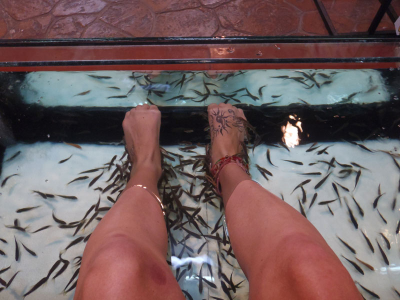 Gypsy jessie 39 s top 5 worst travel moments on a junket for Fish foot spa