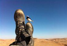 Travel Story | Dahab, Egypt