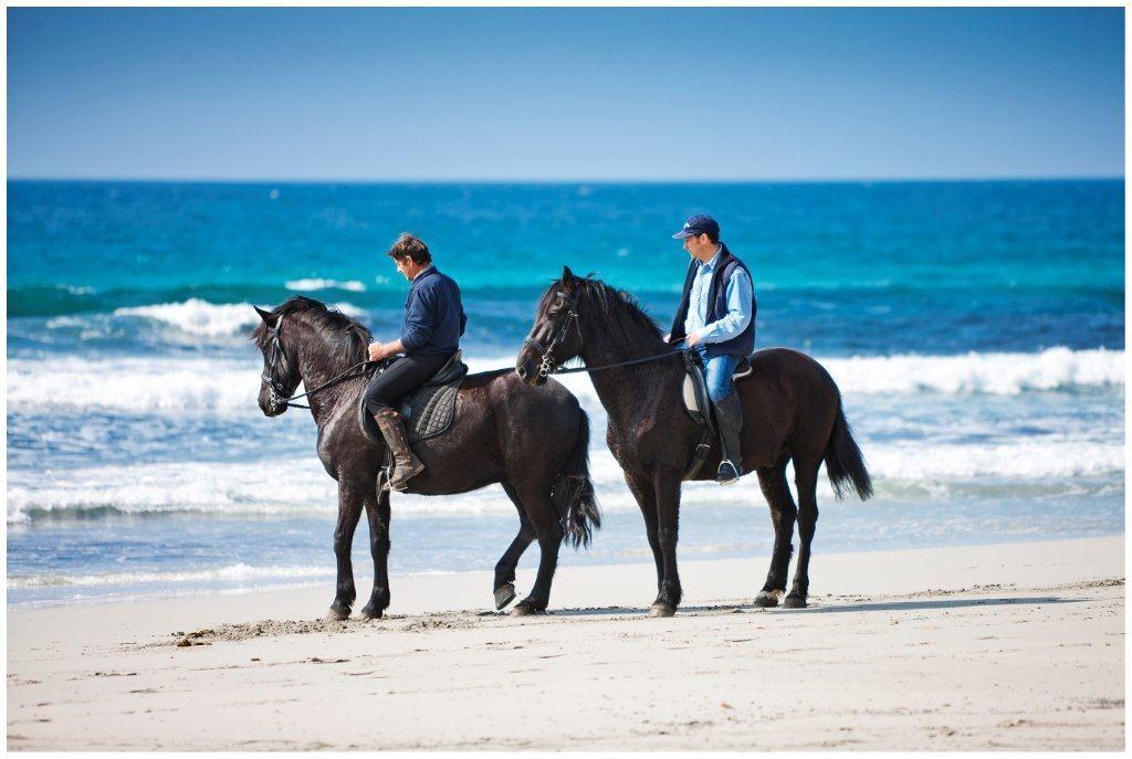 minorca-horse-back-riding